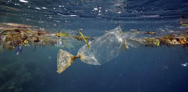 ZERO defende taxa para todos os sacos de plástico