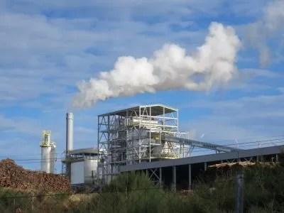 ZERO exige a suspensão imediata dos subsídios à produção de energia elétrica a partir de biomassa em duas novas centrais em Fundão e Viseu