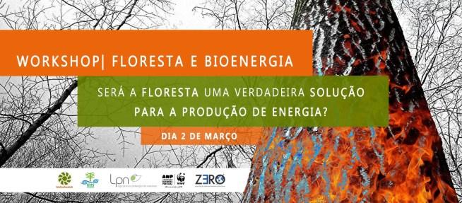 Workshop Floresta e Bioenergia