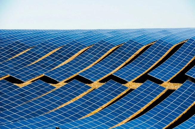Centrais solares ocuparão dez mil hectares até 2030 – ZERO quer maiores cuidados e planeamento