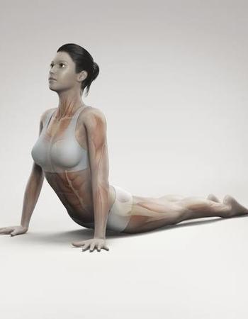Cobra Yoga Pose for Belly Fat