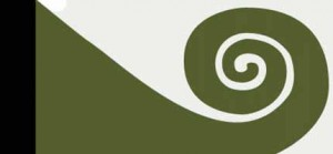 Hundertwasser Flag_New_Zealand_Koru_Flag