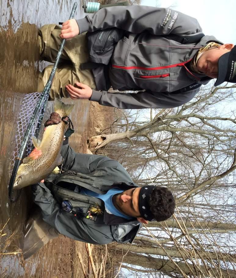 Lake Run Brown Trout
