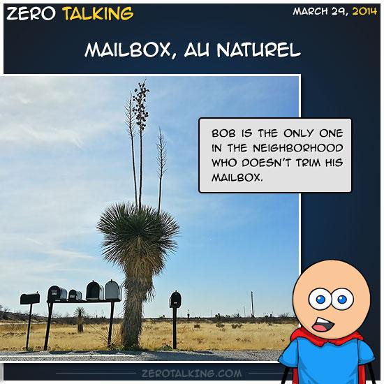 mailbox-au-naturel-zero-dean