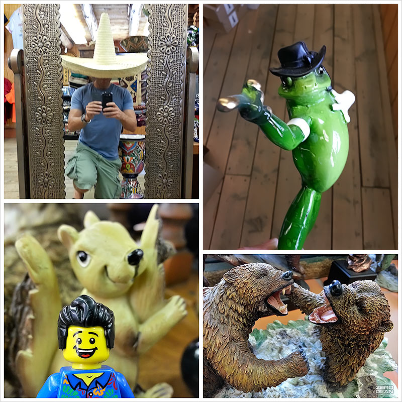 selfie-with-frog-bill-dollar-squirrel-and-two-bears-fighting