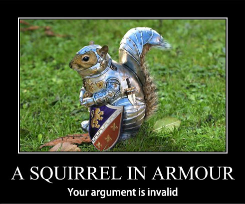 squirrel-in-armour-argument-invalid