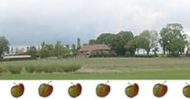 Tullens Fruit Farm