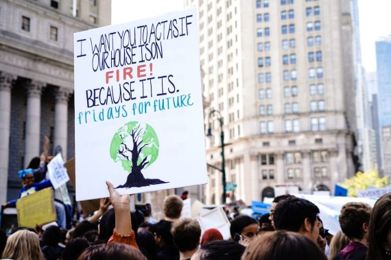 fridays for future protest signs