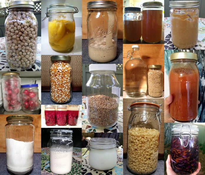 A collection of jars for fermenting, storing, freezing…glass jars have so many uses!