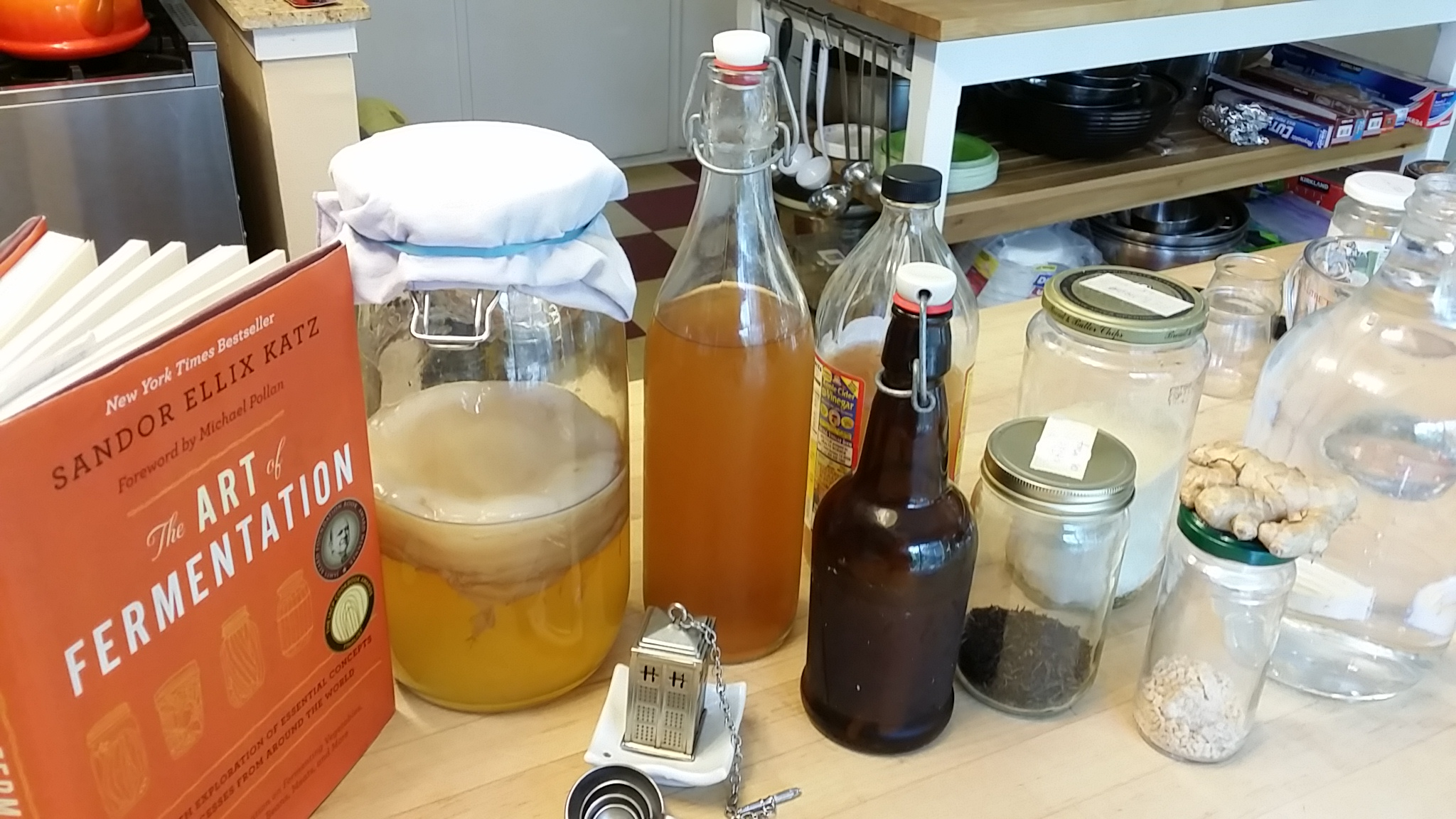 If the world were a village of 100 people lesson plan - Kombucha Workshop