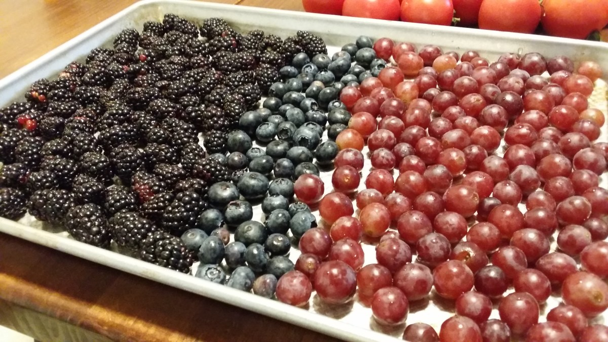 How to Freeze Food Without Using Plastic