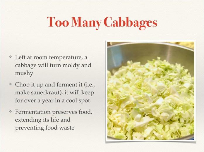 fermentation slide 3