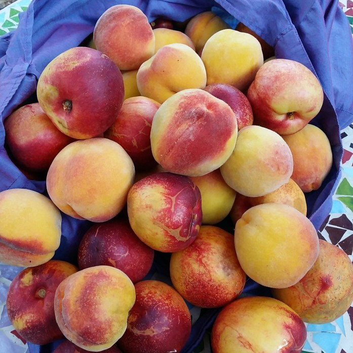 peaches and nectarines