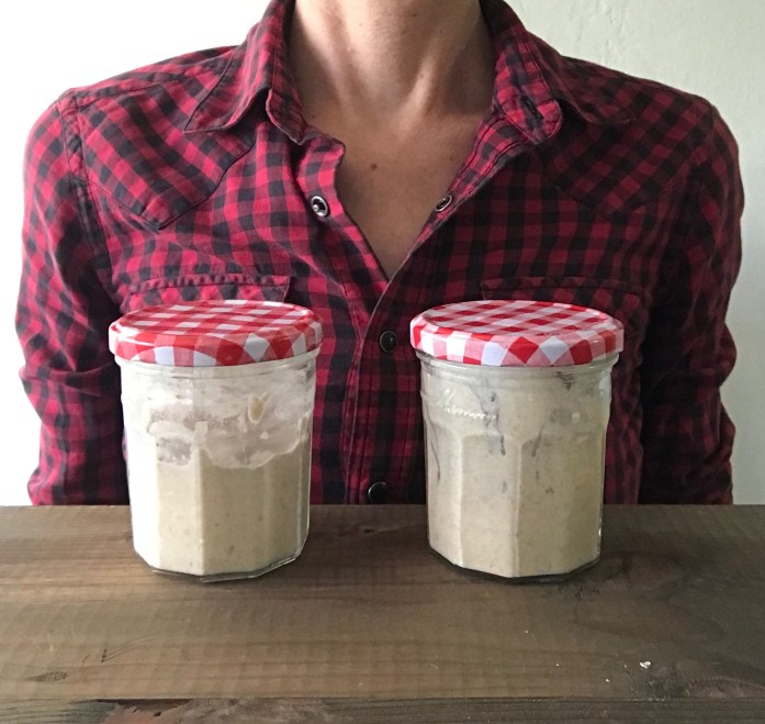 jars of sourdough starter for zero waste bread