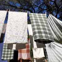 Wash Laundry, Not too Much, Hang to Dry