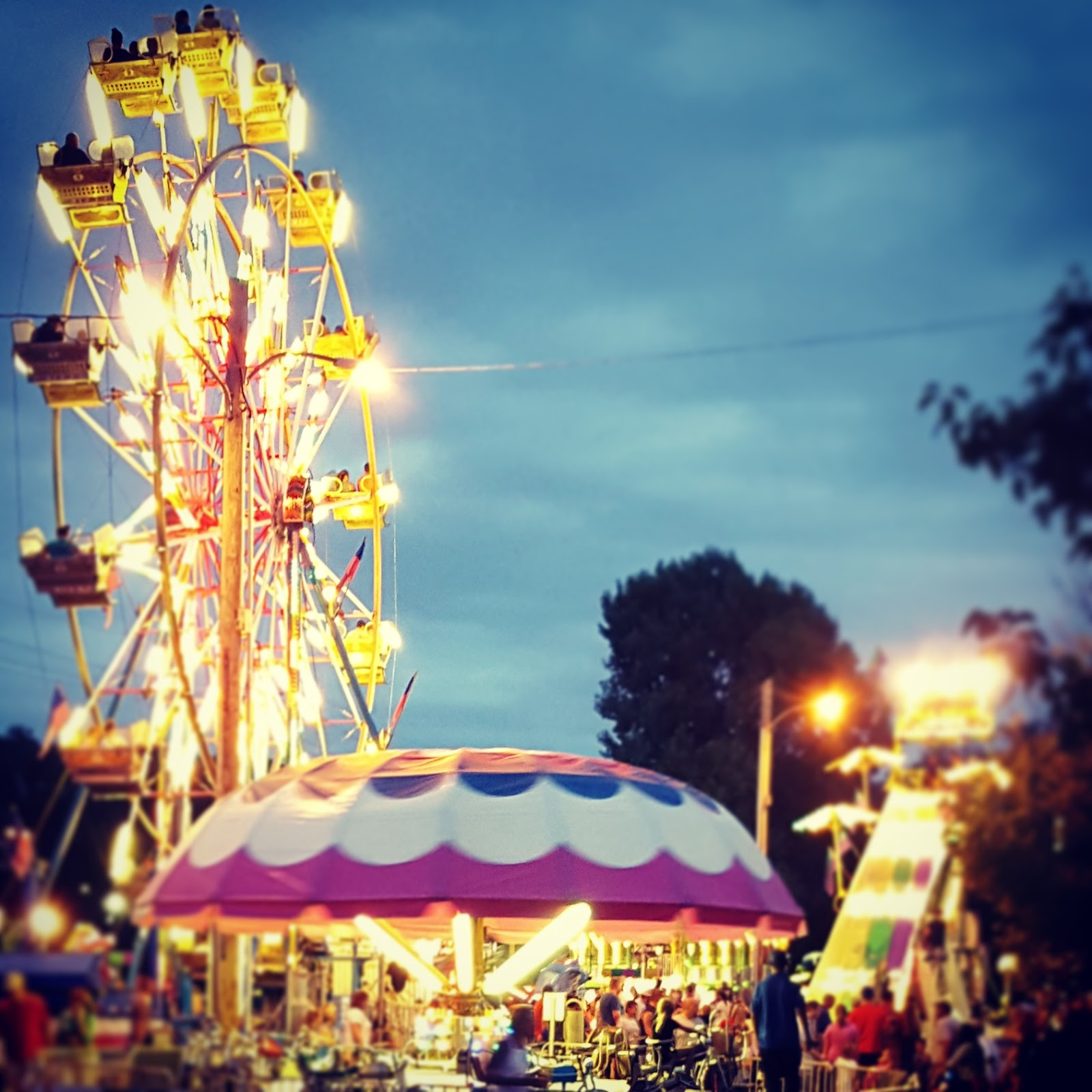 It might be the cheap carnival rides, the livestock shows, the exhibits, or the deep fried everything. When I say everything, I really mean everything, too.