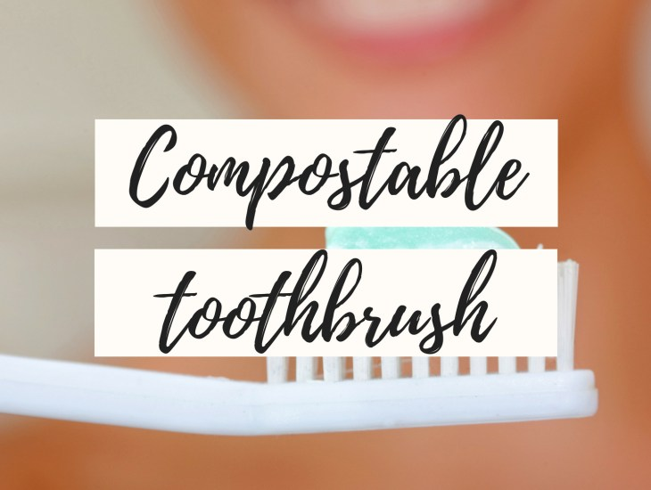 zero waste toothbrush