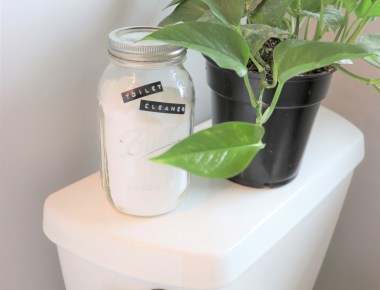 zero waste toilet cleaner