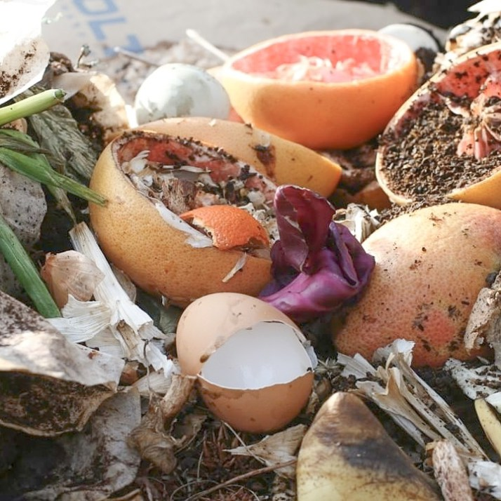 How to Compost Food Waste in a Storage Tote