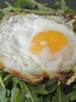 EVOO Fried Egg