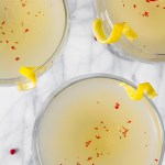 Vodka-Kombucha Cocktail with Cardamom | Zestful Kitchen