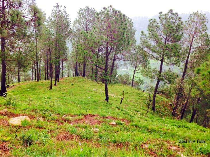 hill stations near Delhi