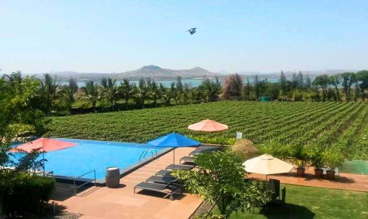 Mumbai weekend getaway: go wine tasting