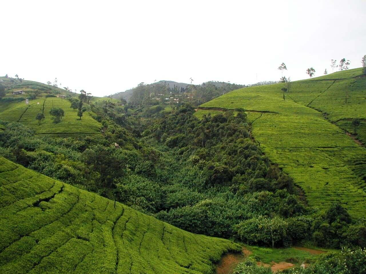 sri lanka places to visit