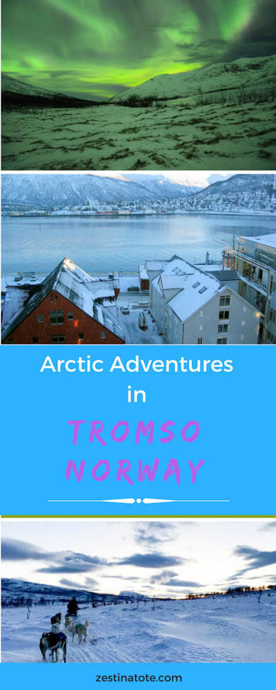 Norway is a dream #winter destination. See the Northern Lights, go for a husky dog sled ride, visit Polar Park, go whale watching.And take your kids with you! #norway #tromso #northernlights #visitnorway #norwaywintertrip #arcticadventures #huskysled #auroraborealis #polarpark #aquarium