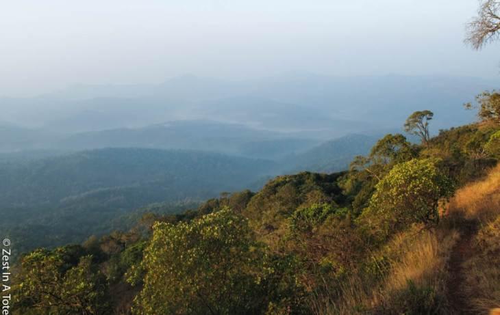 Chikmagalur-Hills