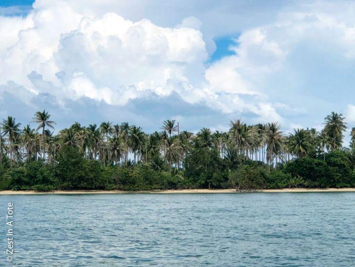 ocean-palm-trees