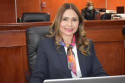 Diputada María del Carmen Armenta Sanabia
