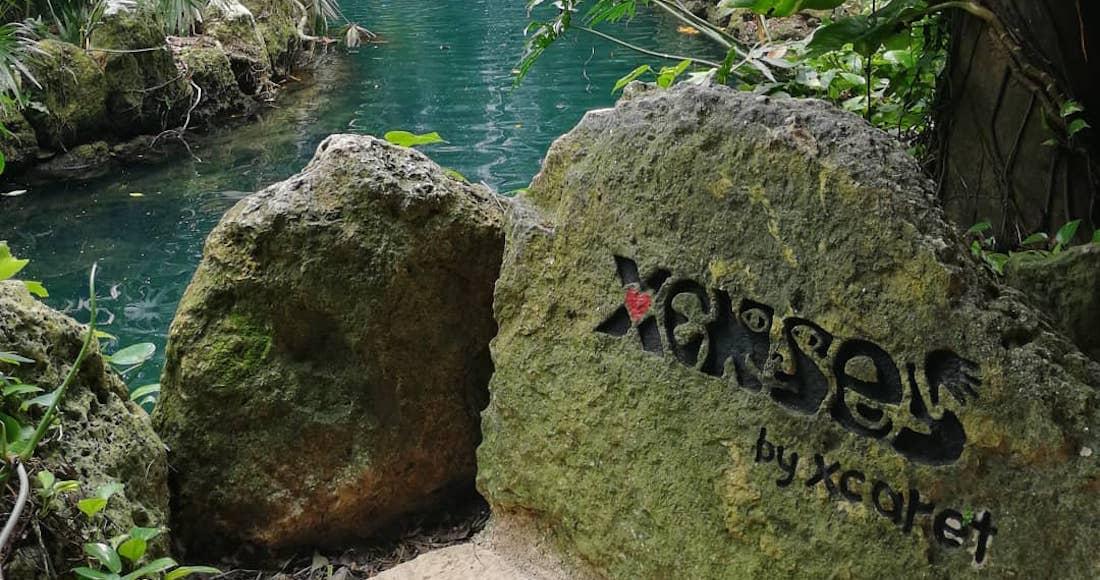 Grupo Xcaret reconoce que niño murió por un error humano