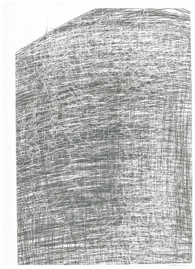 hommage au arnulf rainer with chinese characters