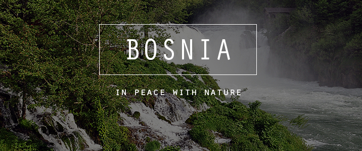 btn-bosnia