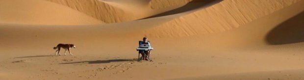 Chien Gauthier Toulemonde - desert