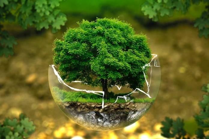 priroda-zastita-okolisa-bp-700