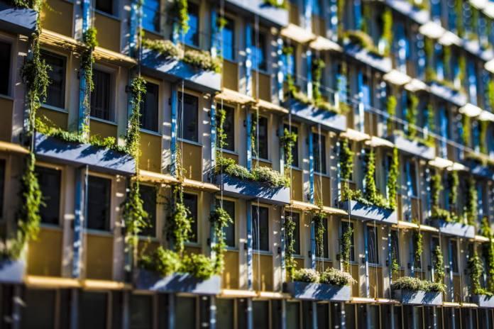 ZELENE FASADE: Djeluju kao prirodni klima uređaji, Bečka gradska uprava u njih ulaže pola milijuna eura