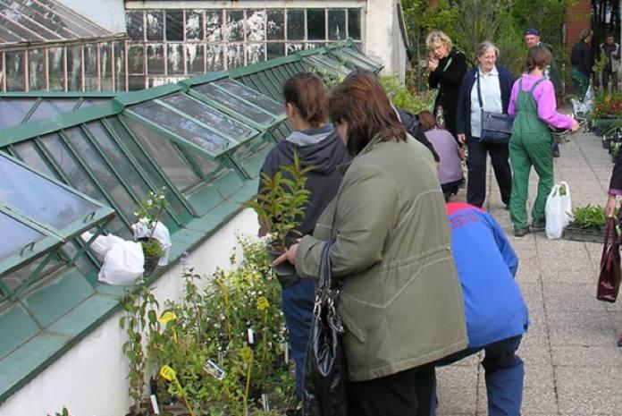 Botanički vrt po vrlo povoljnim cijenama rasprodaje višak uzgojenih biljaka