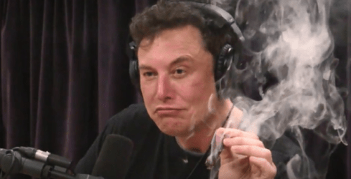 """""""We Need To Stop Panicking"""": Elon Musk Ignored Advice On Restoring Image After Baseless """"Pedo Guy"""" Allegation"""