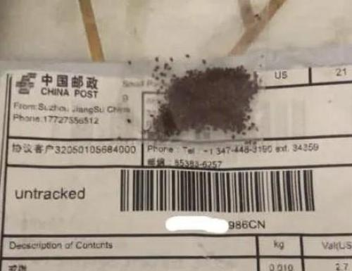 The US Has Started To Identify The Mystery Seeds Being Sent From China