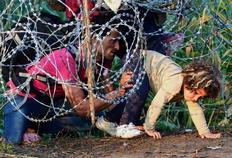 Resultado de imagem para imagens sobre a imigração europeia