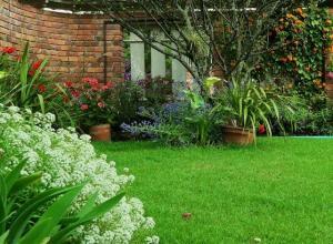 Sussex Gardens sussex gardens Sussex Gardens Competition iu 2 300x220
