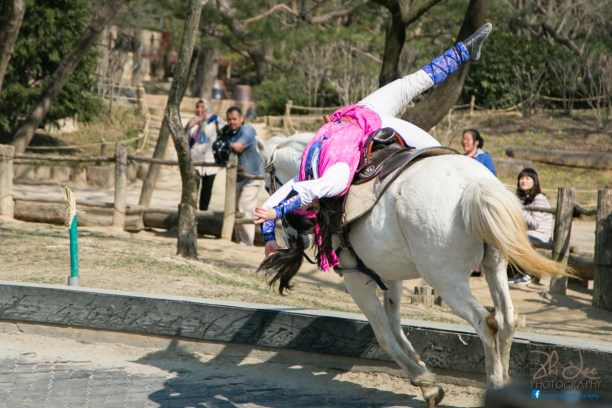 Equestrian Stunt Show at the Korean Folk Village