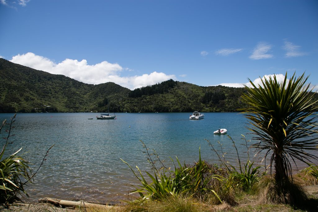 Marlborough Sounds on a Sunny Summer's Day