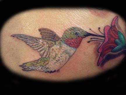 Comments: Ruby throat Hummingbird. Keyword Galleries: Color Tattoos,