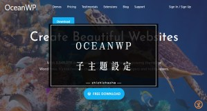 OceanWP 子主題 步驟教學 WordPress佈景主題 新手必學!