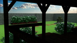Backyard_2