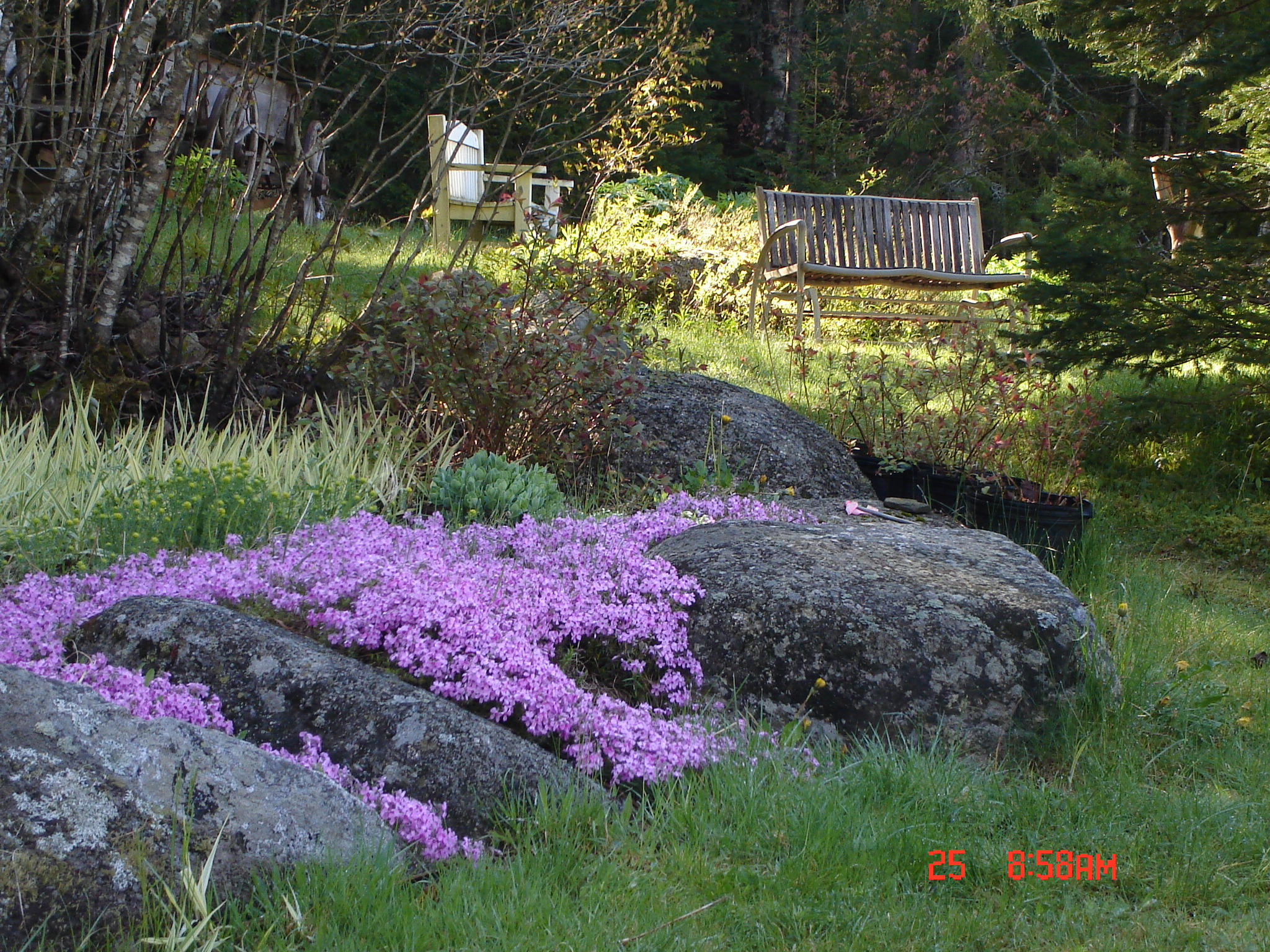 spring 2008 023