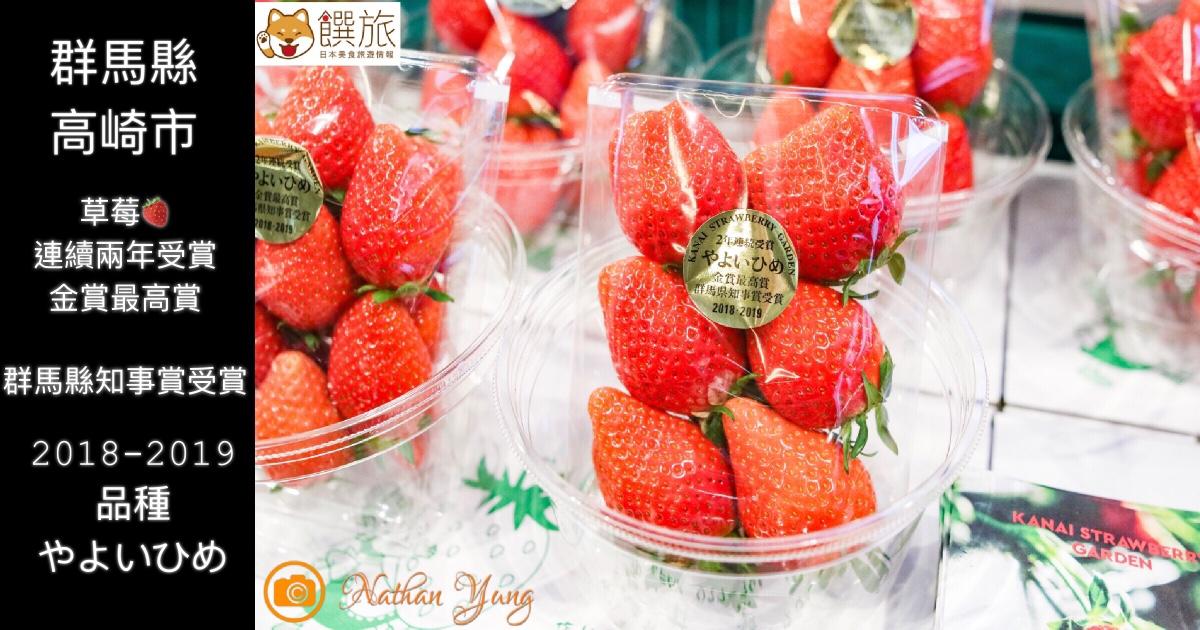 日本草莓 品種何其多 群馬縣 高崎市 やよいひめ 最高金賞